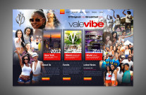 Vale Vibe Website