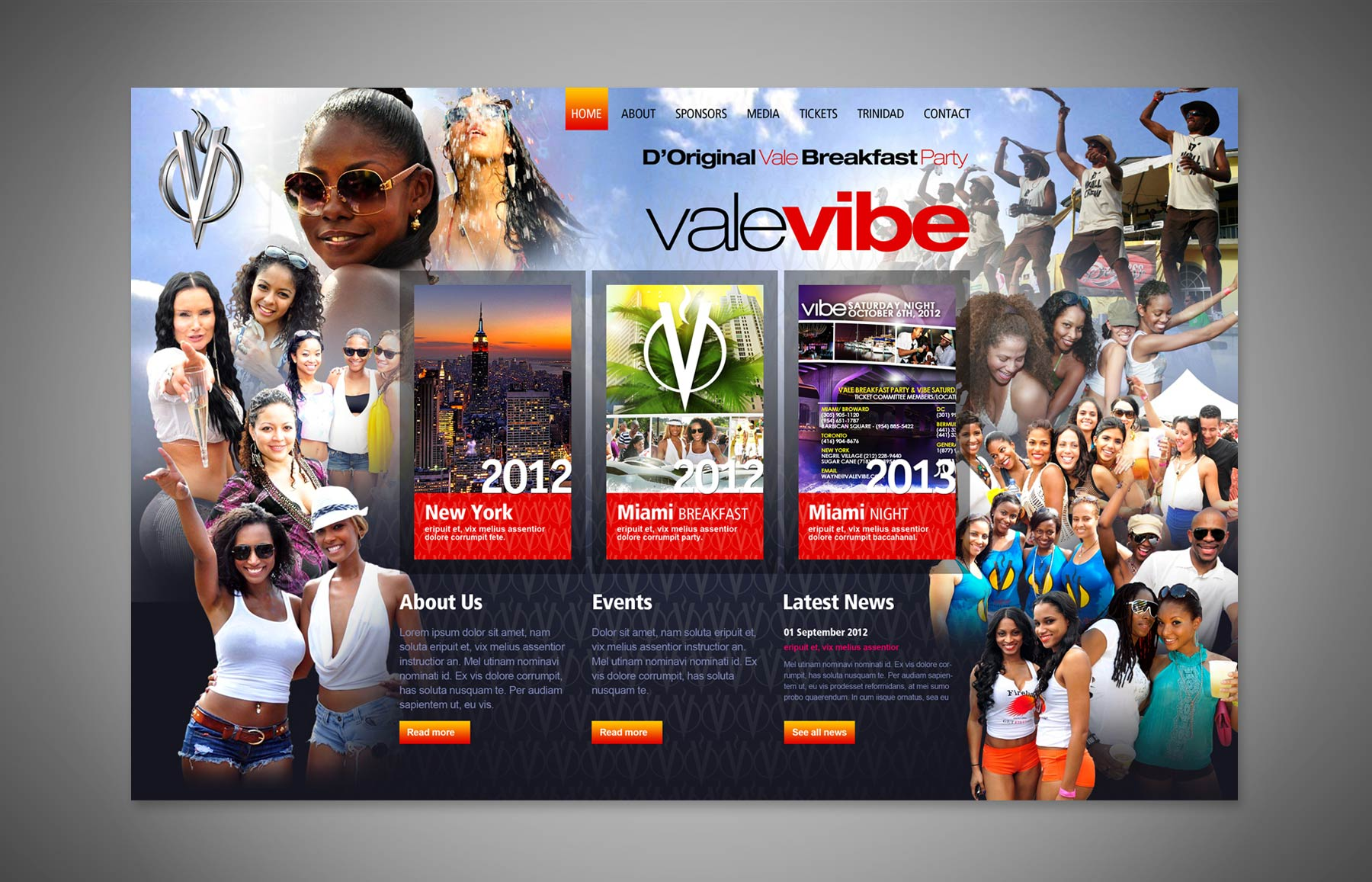 Vale Vibe Website